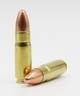 458 SOCOM (Short Barrel Optimized), 500 GR FMJ-SUBSONIC,  20 RDS